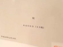 iij-44003-1